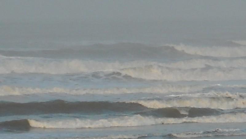 Surf report Le Trillou - France (17) 2009-11-13 09:00:00
