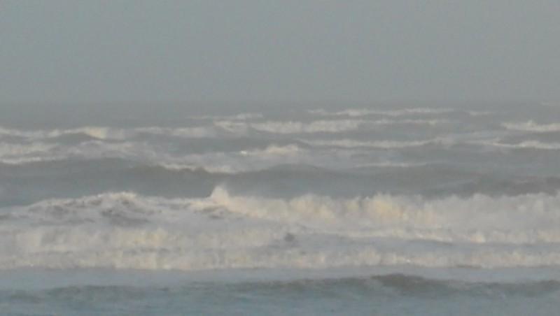 Surf report Le Trillou - France (17) 2009-11-14 09:00:00
