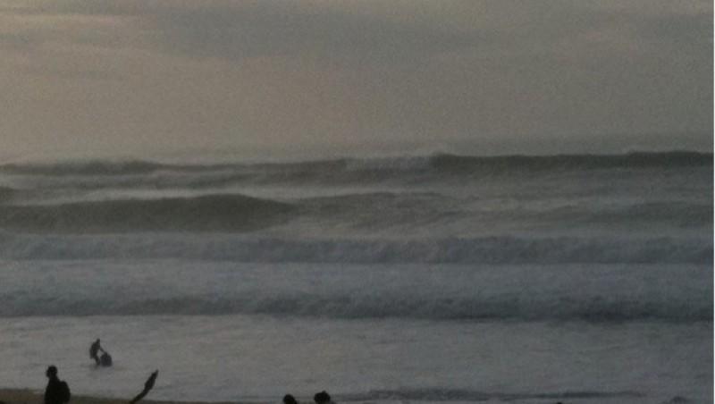 Surf report Tarnos Digue - France (40) 2009-11-14 16:00:00