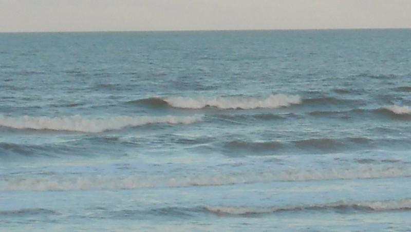 Surf report Le Trillou - France (17) 2009-11-18 09:00:00