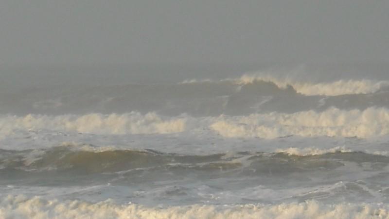 Surf report Le Trillou - France (17) 2009-11-20 09:00:00