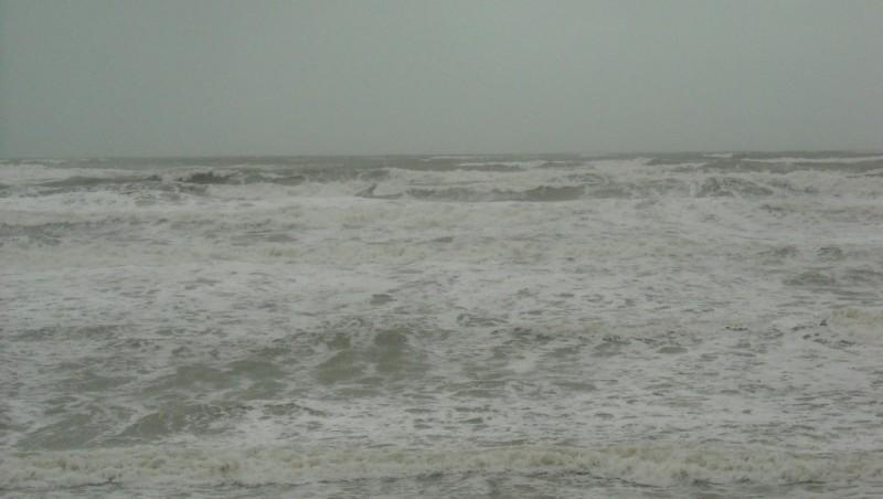 Surf report Le Trillou - France (17) 2009-11-23 09:00:00