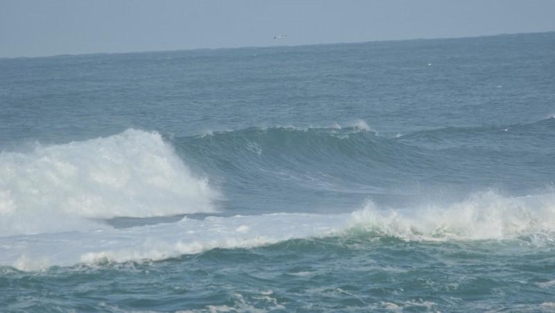 Surf report Hossegor - La Nord - France (40) 2009-11-28 10:00:00