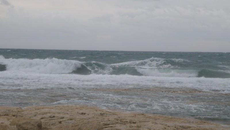 Surf report Sausset-les-Pins - L'Hermitage - France (13) 2009-11-29 08:20:00