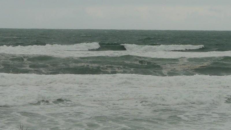 Surf report Mimizan - Plage Garluche - France (40) 2009-11-29 12:00:00