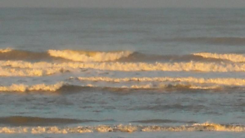 Surf report Grand Village - France (17) 2009-12-01 09:00:00