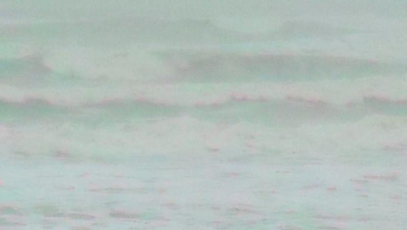 Surf report Grand Village - France (17) 2009-12-10 09:00:00