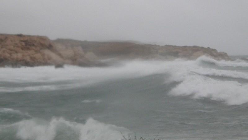 Surf report La Couronne - France (13) 2009-12-21 16:15:00