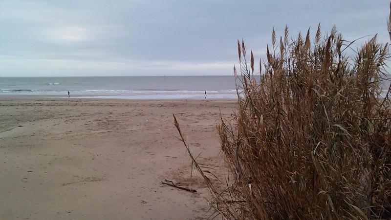 Surf report Royan - Grande Plage - France (17) 2009-12-28 10:30:00