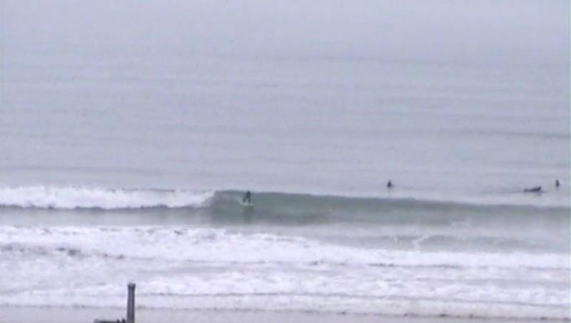 Surf report Sciotot - France (50) 2010-01-23 12:00:00