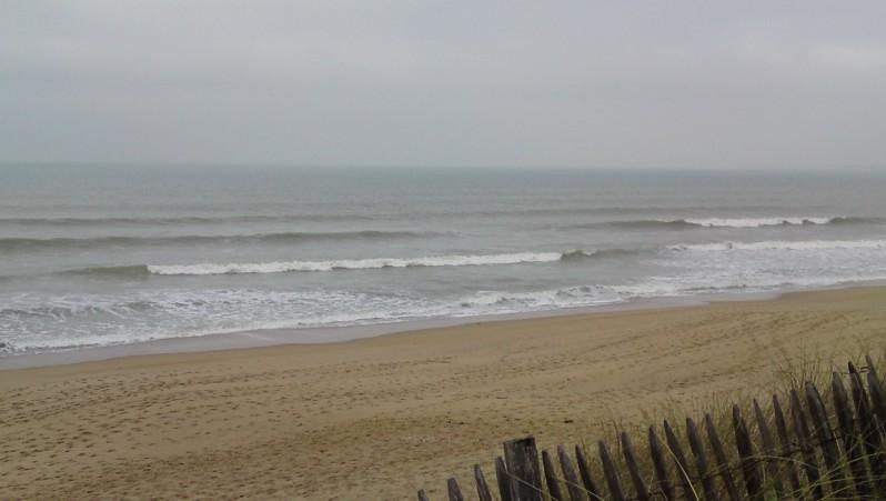 Surf report La Térrière - France (85) 2010-01-24 11:00:00