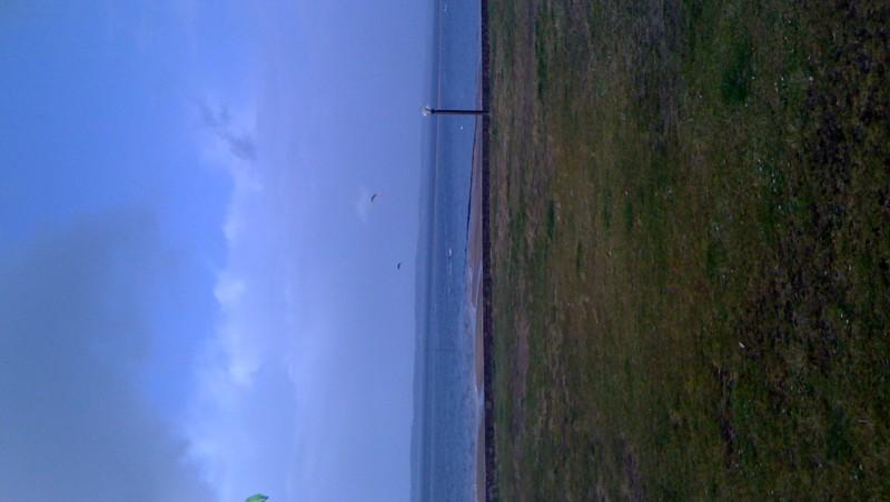 Wind report Arcachon - Les Arbousiers - France (33) 2010-02-05 15:00:00