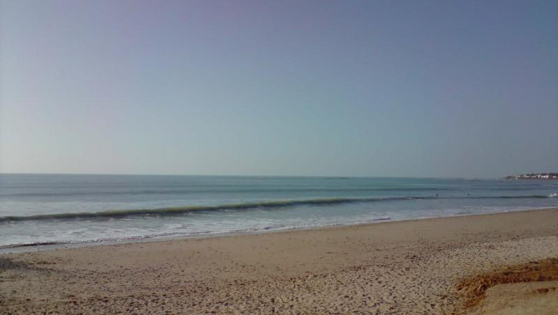 Surf report Plage des Dunes - France (85) 2010-02-16 16:00:00