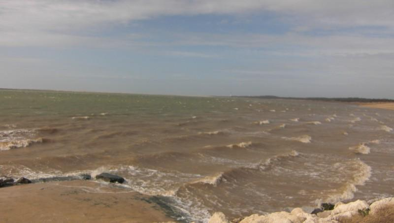 Wind report La Palmyre - Bonne-Anse - France (17) 2010-02-24 10:00:00