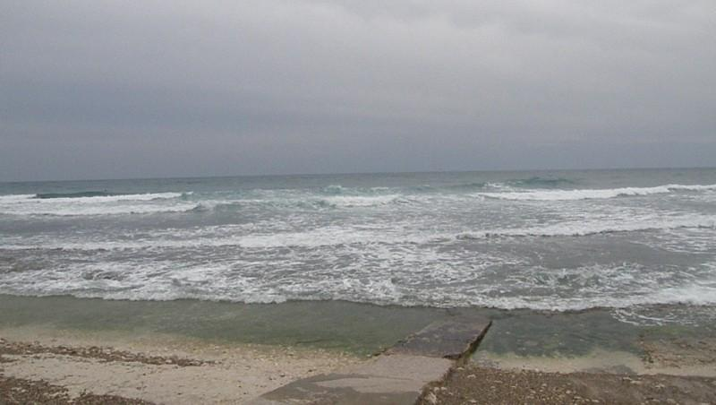 Surf report Sausset-les-Pins - L'Hermitage - France (13) 2010-03-08 17:00:00