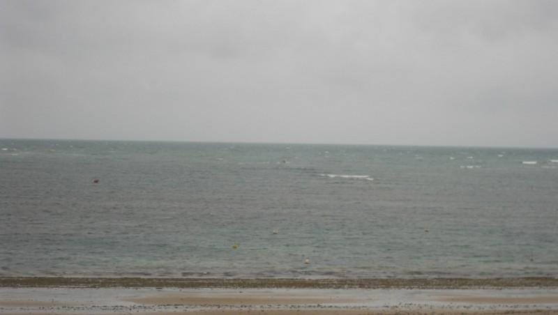 Wind report Chassiron - France (17) 2010-05-29 13:00:00