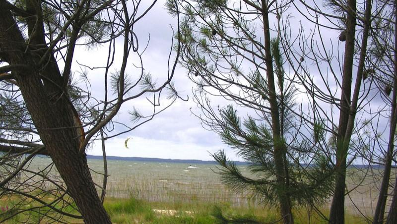 Wind report Les Aigrettes - France (40) 2010-07-14 14:00:00