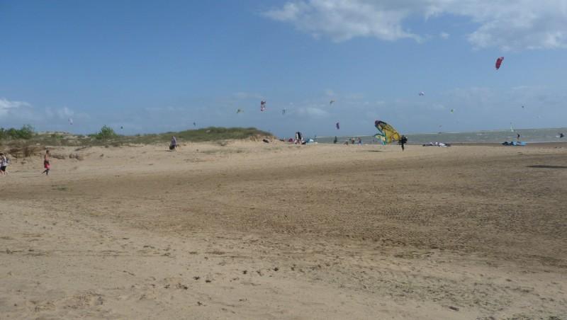 Wind report La Palmyre - Bonne-Anse - France (17) 2010-07-14 14:00:00