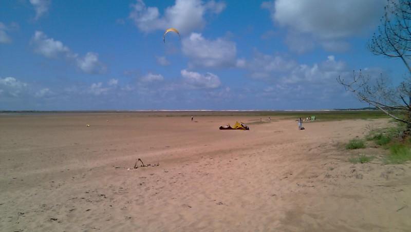 Wind report La Palmyre - Bonne-Anse - France (17) 2010-07-25 17:00:00