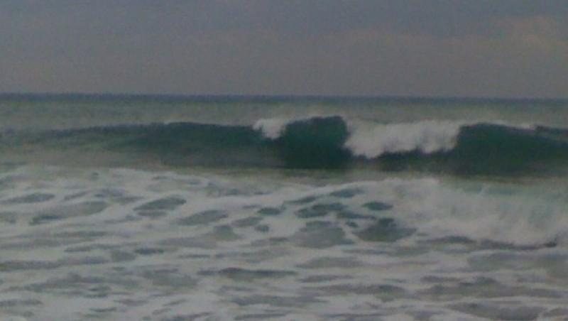 Surf report Sausset les Pins - Plage du Port - France (13) 2010-01-09 09:39:00