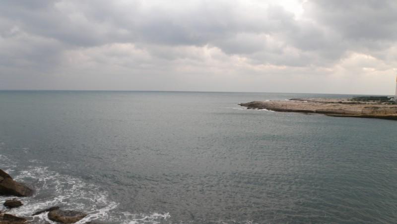 Surf report La Couronne - France (13) 2010-01-09 16:15:00