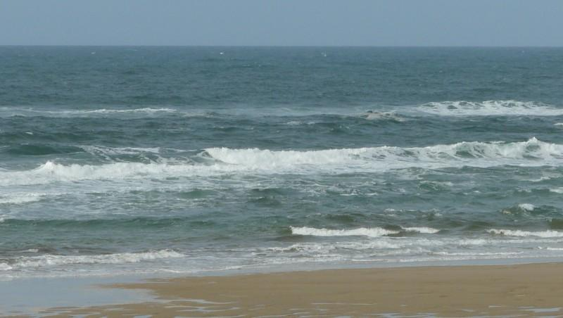Surf report Mimizan - Plage Garluche - France (40) 2010-01-20 14:00:00