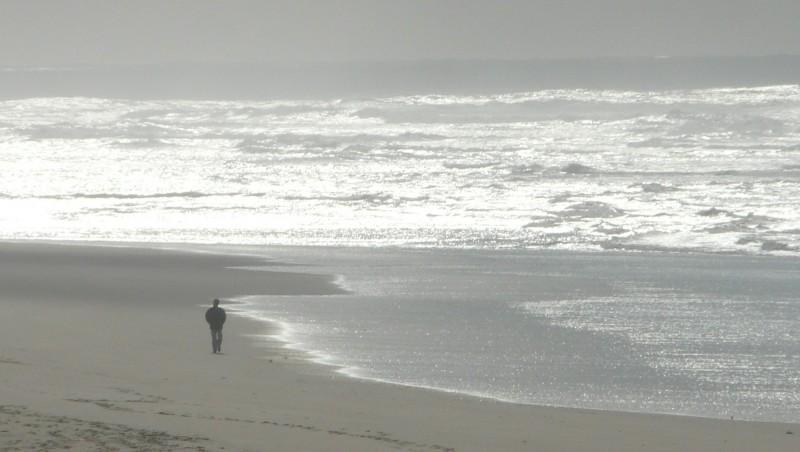 Surf report Mimizan - Plage Garluche - France (40) 2010-01-24 14:00:00