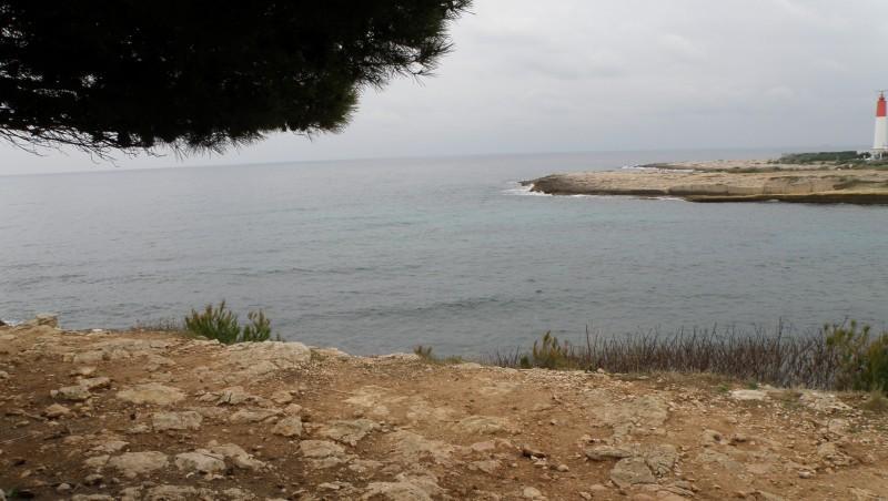 Surf report La Couronne - France (13) 2010-01-24 14:00:00