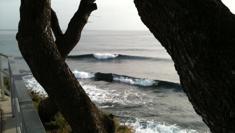 Surf report Sausset les Pins - Plage du Port - France (13) 2010-01-25 15:00:00