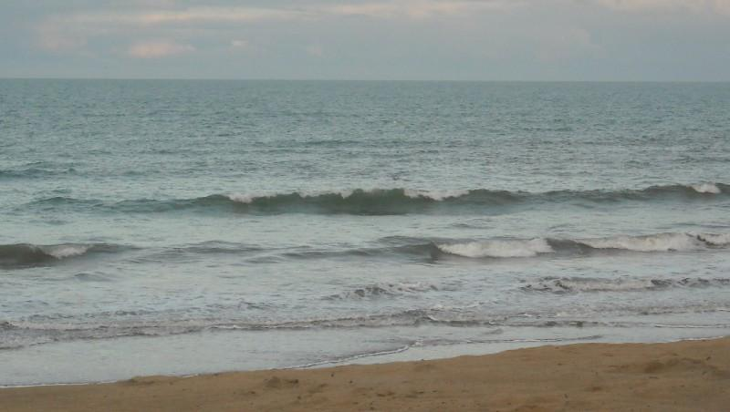 Surf report Grand Village - France (17) 2010-02-02 09:00:00