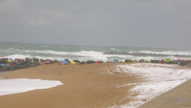 Surf report Anglet Sables d'Or - France (64) 2010-02-11 17:00:00