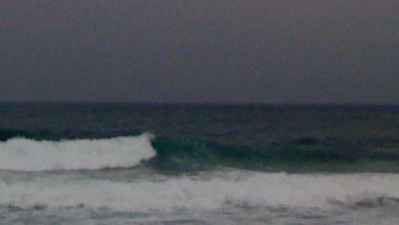 Surf report Sausset les Pins - Plage du Port - France (13) 2010-02-16 14:22:00