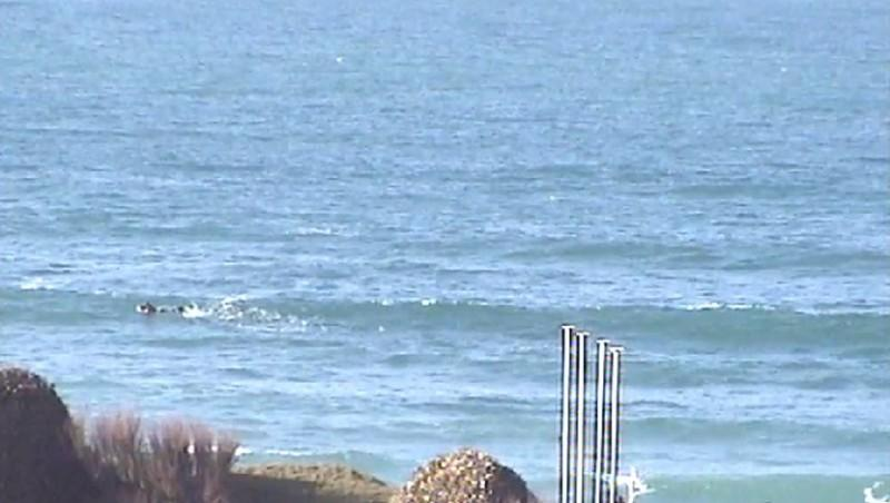 Surf report Sciotot - France (50) 2010-02-19 09:00:00