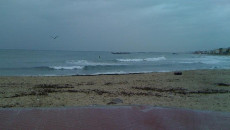 Surf report Palavas-les-Flots - Rive Droite - France (34) 2010-03-03 14:00:00