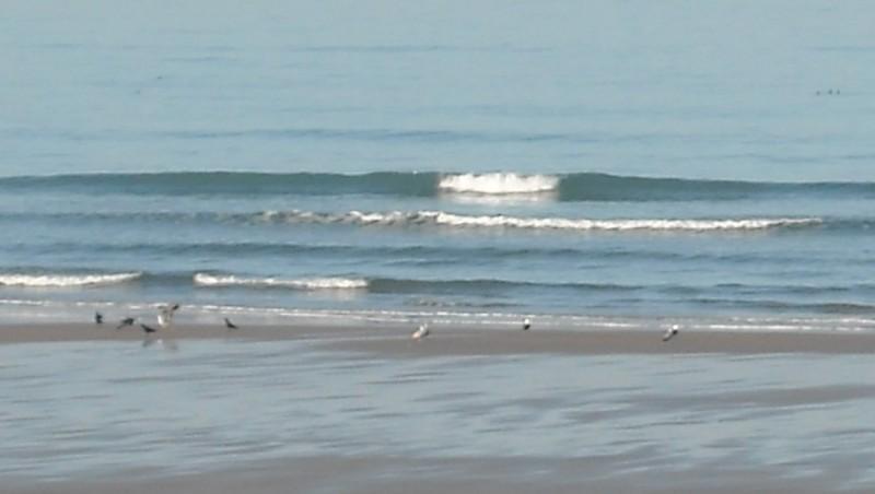 Surf report Grand Village - France (17) 2010-03-15 09:00:00