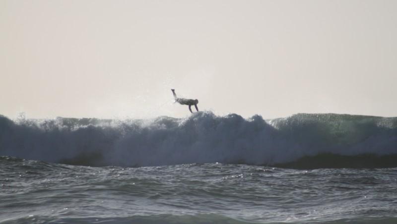 Surf report Lacanau Océan - La Nord - France (33) 2010-03-21 17:00:00