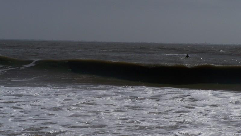 Surf report L'Anse du Sud - France (44) 2010-03-31 15:30:00
