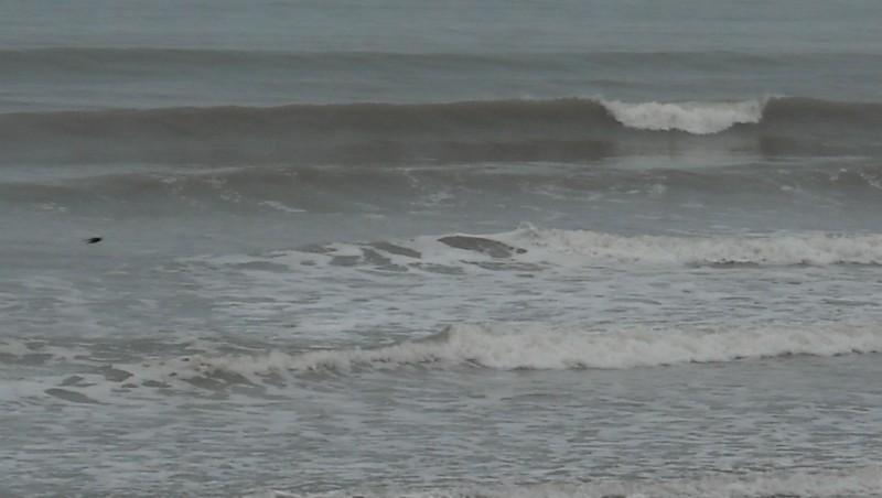 Surf report Grand Village - France (17) 2010-05-01 09:00:00