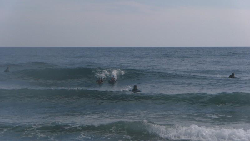 Surf report Sausset les Pins - Plage du Port - France (13) 2010-05-02 17:35:00