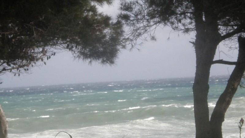 Surf report La Couronne - France (13) 2010-05-04 17:35:00