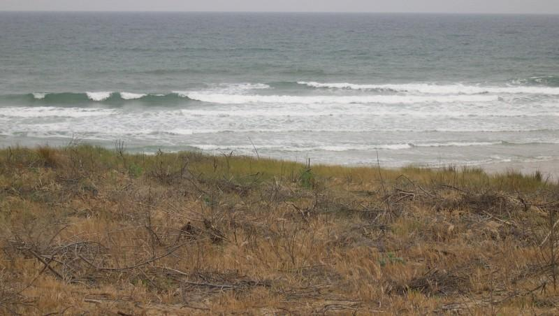 Surf report Lacanau Océan - La Nord - France (33) 2010-05-27 09:00:00