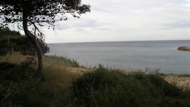 Surf report La Couronne - France (13) 2010-05-30 07:00:00