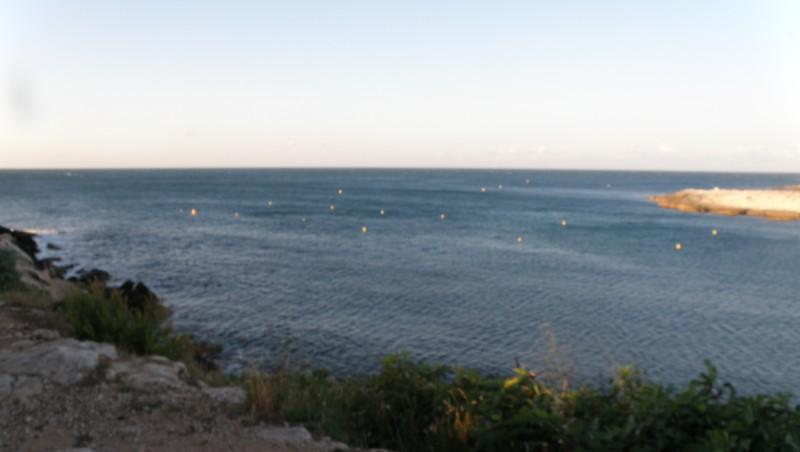 Surf report La Couronne - France (13) 2010-06-20 07:00:00