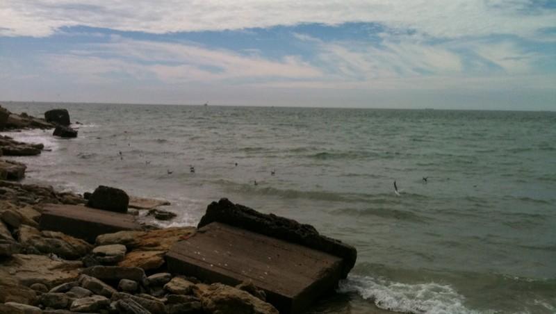 Surf report Wimereux - La Pointe aux Oies - France (62) 2010-07-30 15:12:00