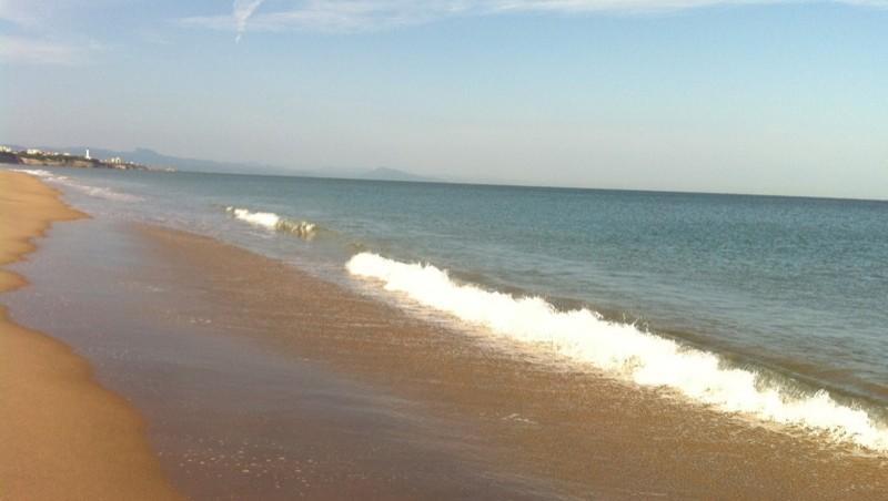 Surf report Anglet Plage de l'Océan - France (64) 2010-09-01 09:00:00