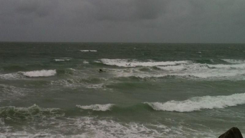 wave report Wimereux - Plage Nautique - France (62) 2010-09-13 17:00:00