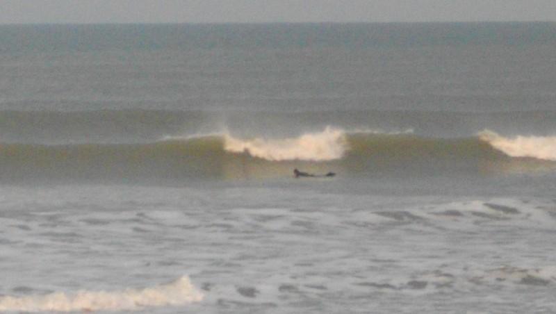Surf report Grand Village - France (17) 2011-11-15 09:00:00