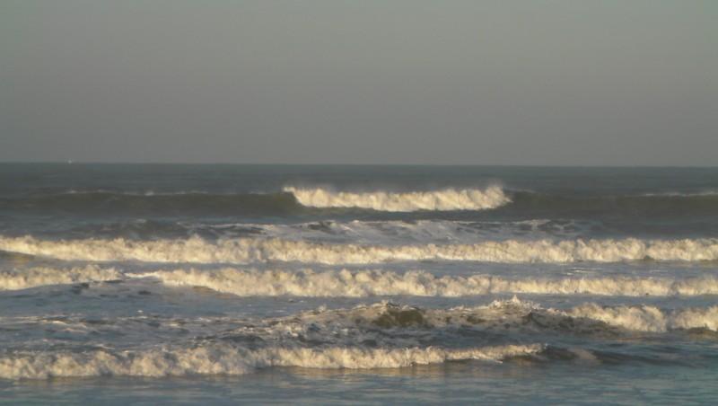 Surf report Grand Village - France (17) 2011-11-19 09:00:00