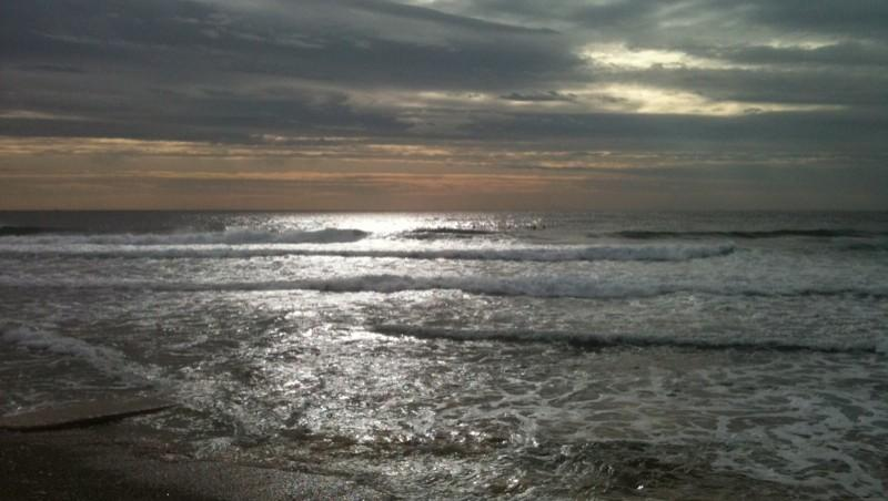 Surf report Sausset les Pins - Plage du Port - France (13) 2011-11-22 11:26:00