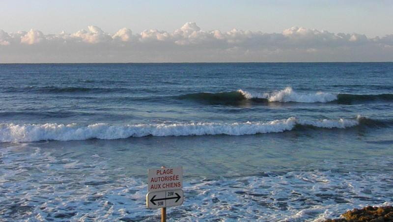 Surf report Sausset-les-Pins - L'Hermitage - France (13) 2011-12-18 05:00:00